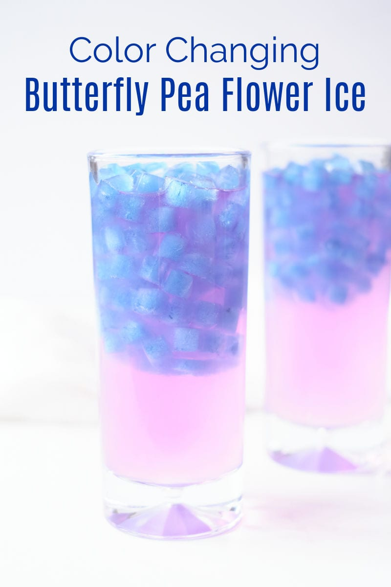 It is fun and easy to make magical color changing ice cubes, when you use all natural butterfly pea flower tea.